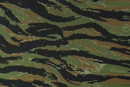 US vietnam vert tigerstripe camouflage texture de fond de tissu Banque d'images