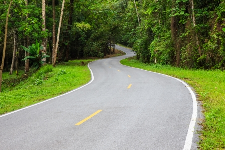 S - curves road into the forest with yellow and white line photo