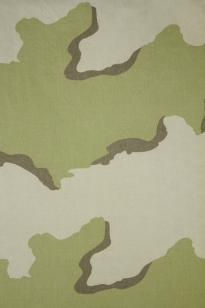 India three color desert camouflage fabric texture background photo