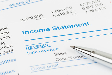 stockholder: Income statement in stockholder report book document are mockup