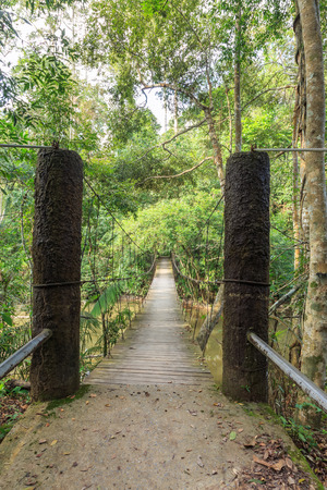 Rope suspension bridge in forest, Khao Yai National Park, Thailand Stock Photo
