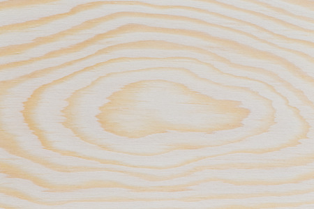 Pine wood texture plank with gnarl