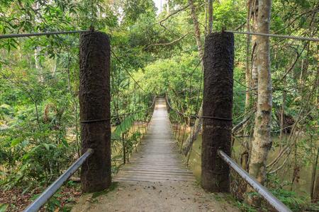 korat: Rope suspension bridge in forest, Khao Yai National Park, Thailand Stock Photo
