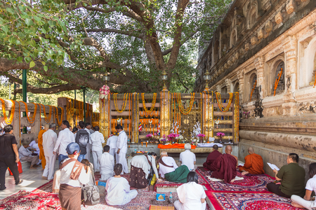 Gaya, Bihar, India - October 16, 2016: Pilgrims and monks  are praying at bodh tree that buddha enlight.