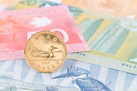 캐나다 동전 돈 캐나다 지폐 돈에 서서 스톡 콘텐츠