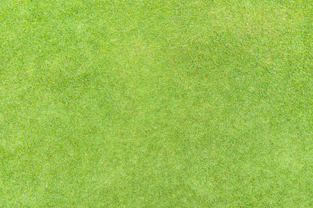 Golf fairway grass texture top view