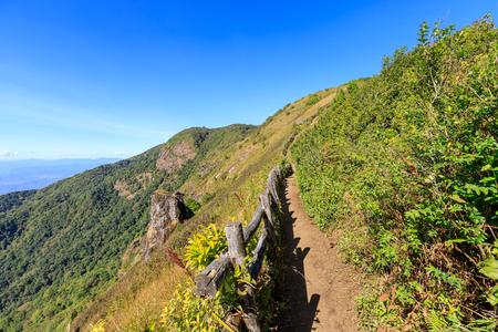 Pha Ngam Noi Cliff e il paesaggio della valle vista a Kew Mae Pan sentiero natura, Parco Nazionale di Doi Inthanon, Chiang Mai, Thailandia