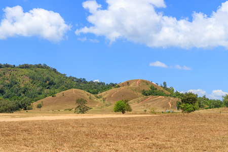 Golden grass at bald hill mountain, scenic park in Ranong, Thailand 版權商用圖片 - 122882677