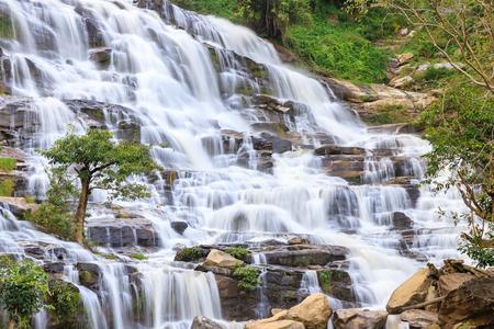 Tree on waterfall background, Mae Ya Waterfall, Doi Inthanon, Chiang Mai, Thailand
