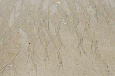 Sand Beach for Natural Background. Foto de archivo