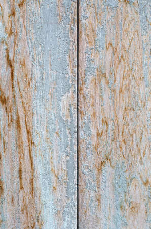 Grunge Texture of Old Wood Plank. Foto de archivo