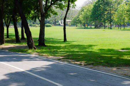 Pathway in the Public Park of Bangkok, Thailand. Foto de archivo
