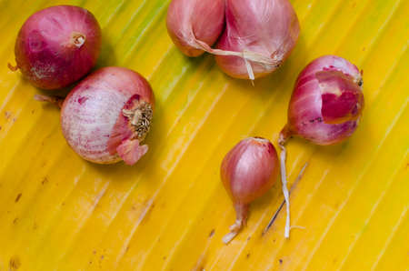 Thai Red Onion on Yellow Banana Leaf.