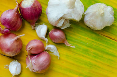 Garlic and Red Onion on the Yellow Banana Leaf. Foto de archivo