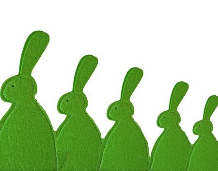 Green konijntjes