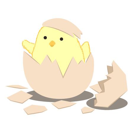 chick: baby birth chick