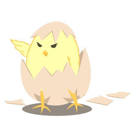 chick: leader baby chick Illustration