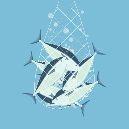atun rojo: redes de pesca atún rojo