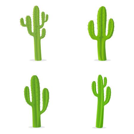 Cactus Ilustrace