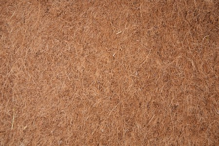 Rough texture made from coconut photo