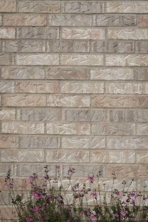planar: background of random orange tone brick wall with small flower bush foreground, pattern vertical