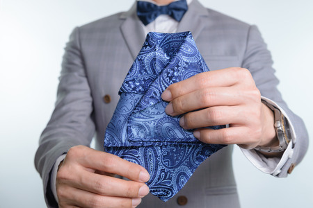 Man in grey suit, plaid texture, blue bowtie and pocket square, close up white background Stock Photo