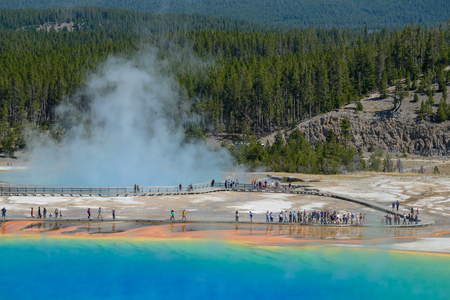 Famous trail of Grand Prismatic Springs in Yellowstone National Park from high angle view. Beautiful  hot springs with vivid color blue green orange in Wyoming. Imagens