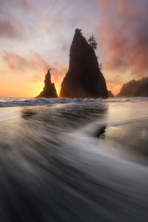 Sunset with seastack at Olympic National Park, Wahington, USA Imagens