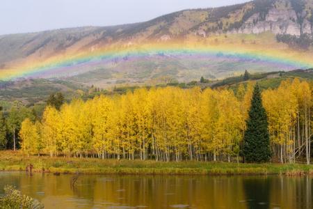 Full spectrum of rainbow and fall color of aspen in Colorado