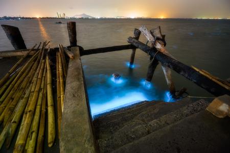 빛나는 아름 다운 남빛과 푸른 색을 보여주는 바다 해안에서 Bioluminescence 현상.