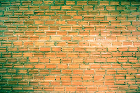 plaster mould: The old red brick wall Green mold.