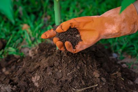 Logistik Waldbauern mit organischem Dünger. Standard-Bild - 45797704