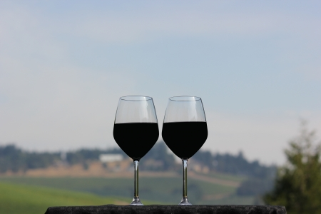 Spectacular focus of two large wine glasses half full of red wine on a table cloth atop a small table overlooking the the vineyard with mostly warm skies