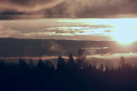 Glorious sunrise over a beautiful silhouetted tree line showing a beautiful display of sun, clouds and fog