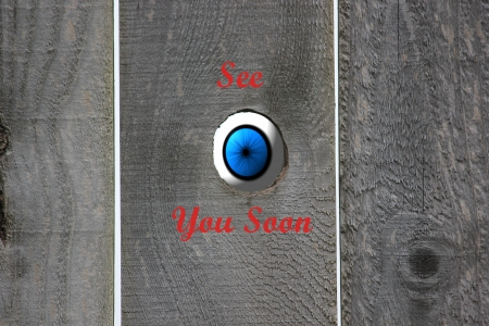 Blue eyeball looking in through an open knot hole in a weathered wooden fence with the graphics reading See You Soon