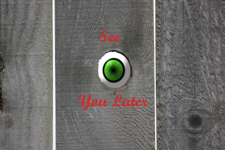 Green eyeball looking in through an open knot hole in a wooden weathered fence with the graphics reading See You Later
