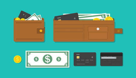 Wallet, card and cash money. Icon of purse with credit card, currency and gold coins. Bank account with salary. Brown leather wallet with pockets. Concept of shopping, finance and payment. Vector.