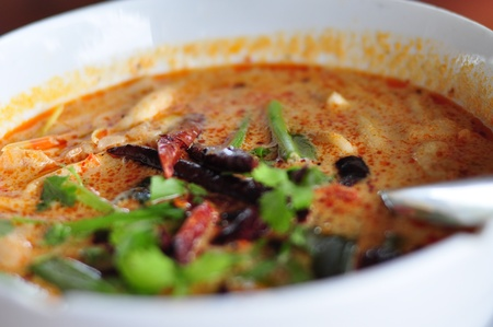 Thai Food Tom Yum Goong Stock Photo - 12997042
