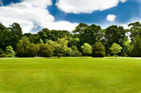 green lawn with some trees and blue sky clouds