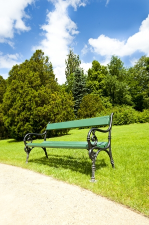 armchair in park with road photo