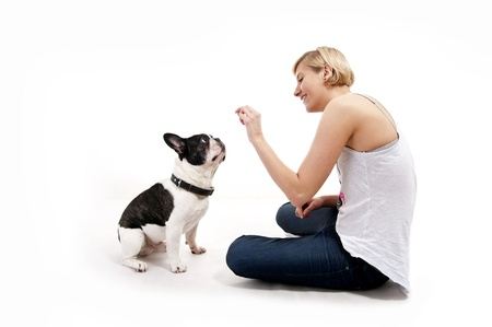 Woman with her dog playing Stock Photo