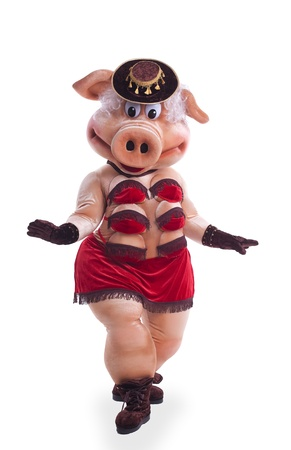 Swine mascot costume dance striptease in hat isolated photo