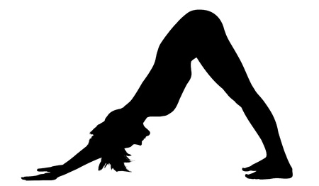 positions: young woman training in yoga - Downward Facing Dog stand pose Illustration