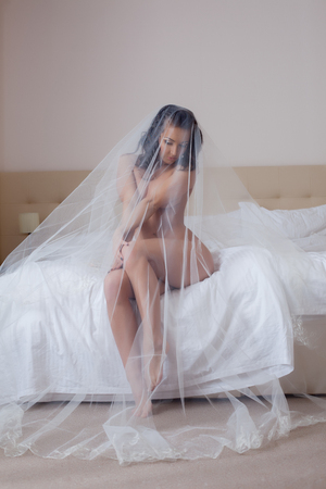 nude adult: Image of beautiful dark-haired bride posing naked in veil Stock Photo