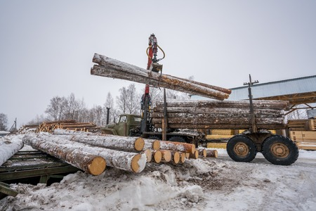 sawmill: Sawmill in wintertime. Image of truck loading timber Stock Photo
