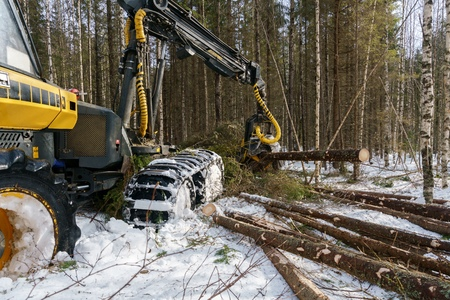 timber harvesting: Image of log loader cut down trees in winter forest