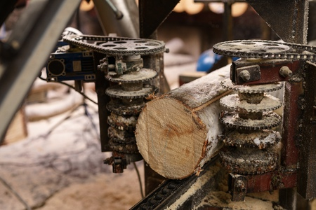 sawmill: Image of machine for sawing wood at sawmill, close-up