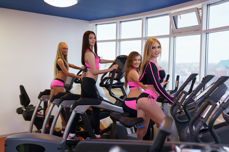 simulators: Image of sexy girls training on simulators in fitness centre