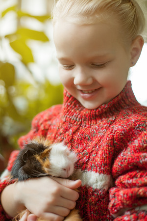 cavie: Portrait of smiling little girl looking at cavy, close-up Archivio Fotografico