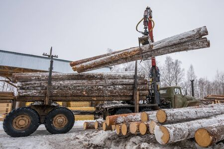 Sawmill in winter. Image of truck loading timber 免版税图像